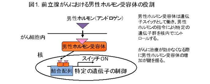 202007takayamazu1.png