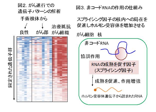 202007takayamazu23.png