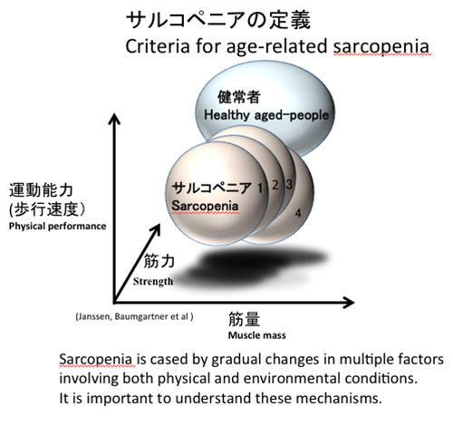 サルコペニアの定義