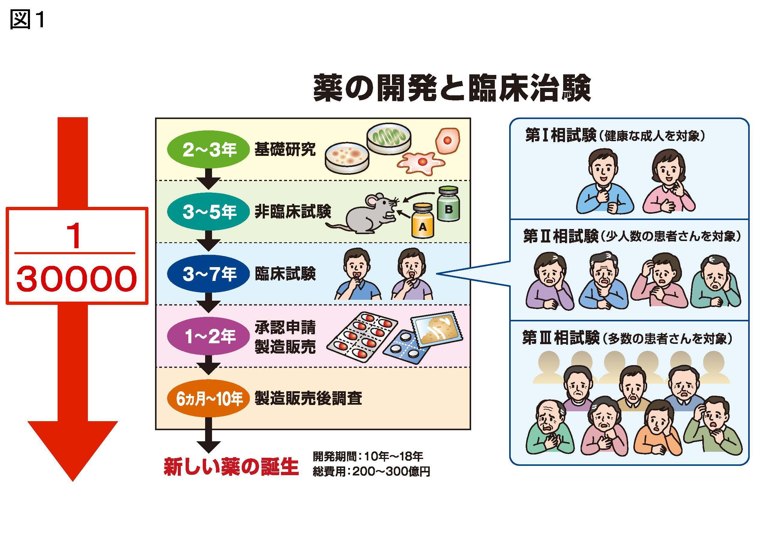 図1 薬の開発と臨床治験