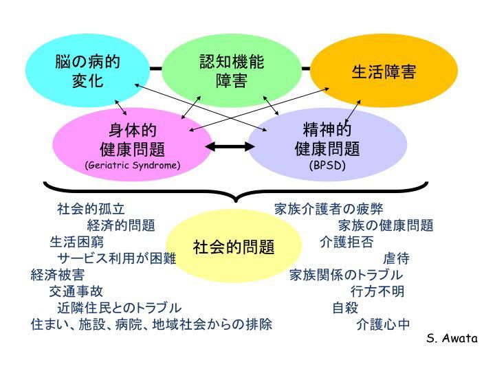 図2. 認知症の臨床像:複雑化について